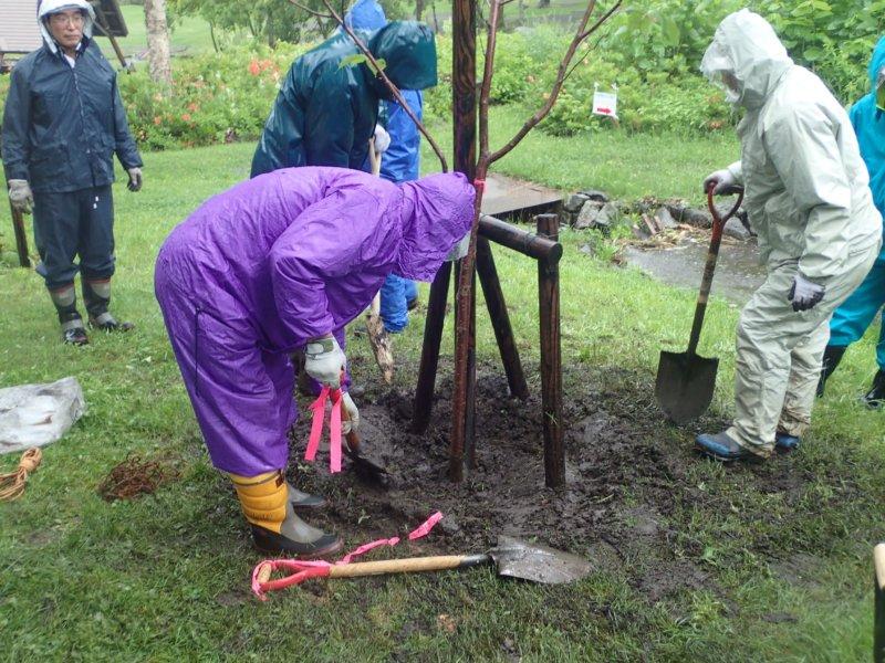 Image of 森づくりボランティア事業に参加しました 2