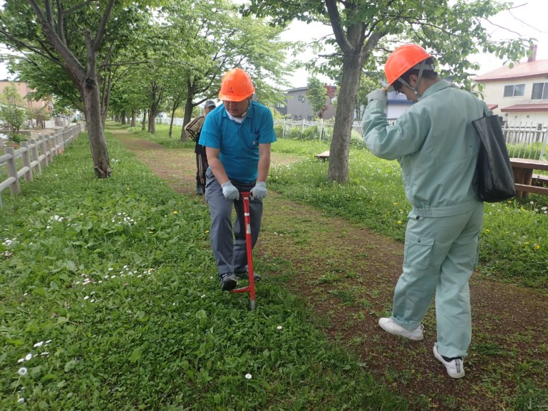 Image of 岩見沢市北3条西13丁目の桜並木の保育活動について 3