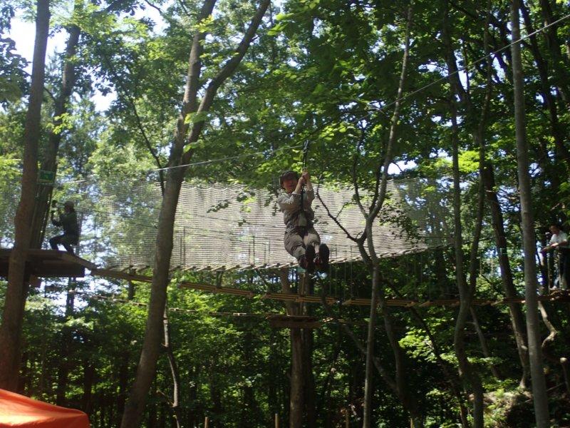 Image of 北海道命名150年記念『木育勉強会~新しい森林の楽しみ方~』の開催について 4