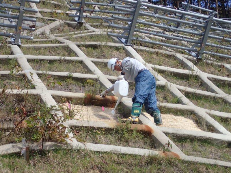 Image of 知内町小谷石中の沢での酸性硫酸塩対策緑化工の試験施工 5