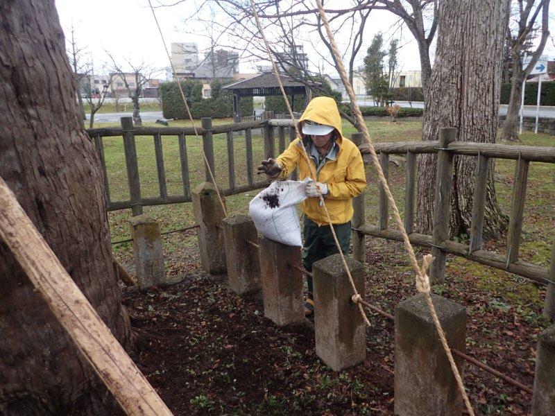 Image of 北海道当別町開拓記念樹イチイへの「協働」での保全作業 9