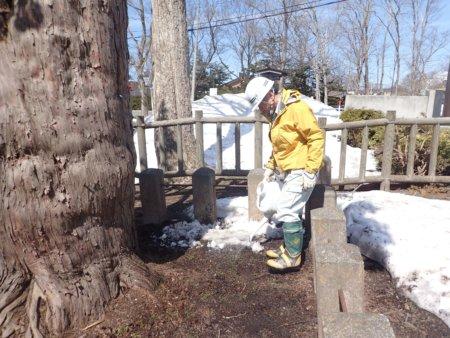 Image of 北海道当別町開拓記念樹イチイへの「協働」での保全作業・その2 3