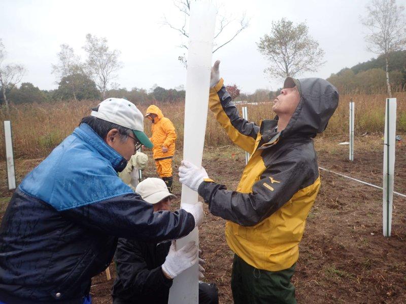 Image of 北海道木育フェスタ2019に参加し、ヤチダモの植樹をしました 3