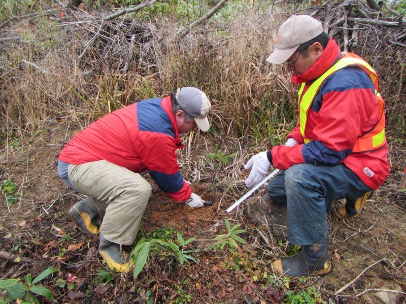 Image of 林業の軽労化~下刈作業軽減化対策試験地の設定と測定 4