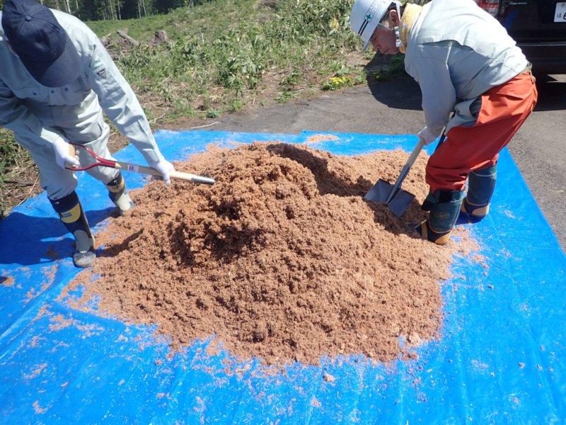 Image of 林業の軽労化~下刈作業軽減化対策試験地の設定と測定 1