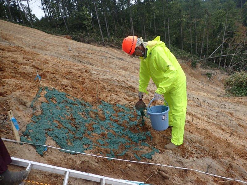 Image of 胆振東部地震に起因した崩壊地での緑化試験 5