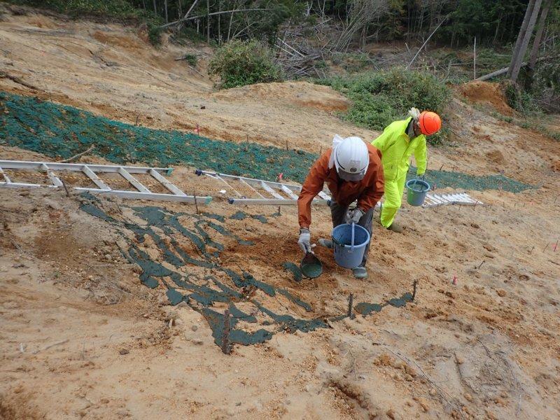 Image of 胆振東部地震に起因した崩壊地での緑化試験 3