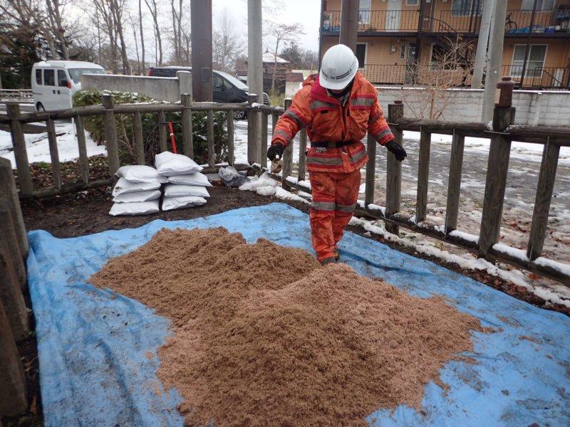 Image of 北海道当別町開拓記念樹イチイにおける「協働」での保全作業・その3 7